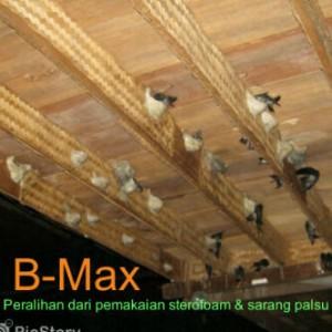 B-Max 2